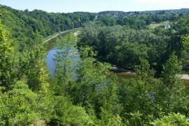 Summer Trail Tour: Homer Watson Park Trails