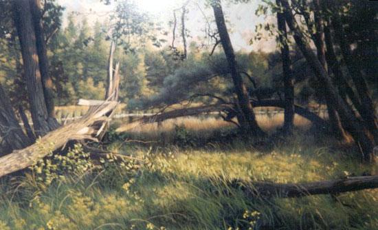 Musagetes Trailway - RIM Park - Artwork